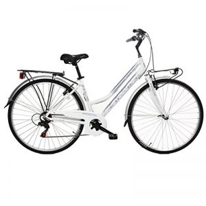 Bike evolution BIKEVOLUTION City Bike 28 Donna 6v 44 de la marque Bike evolution image 0 produit